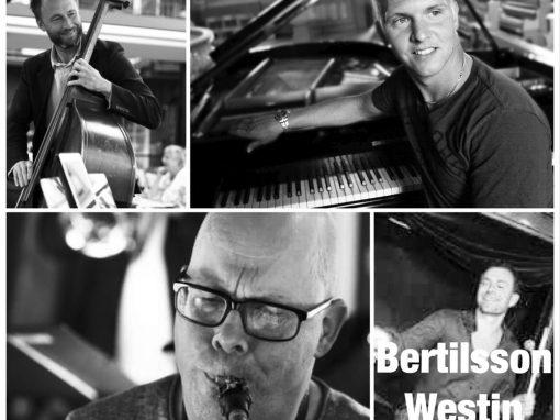 Bertilsson/Westin project